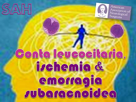 conta-leucocitaria-ischemia-e-sha-nm