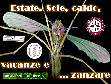 estate-sole-caldo-vacanze-e-zanzare-nm