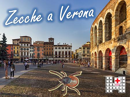 Zecche a Verona