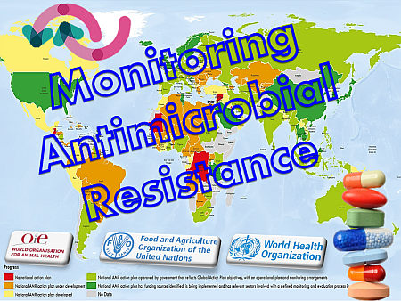 monitoring-antimicrobial-resistence-nm