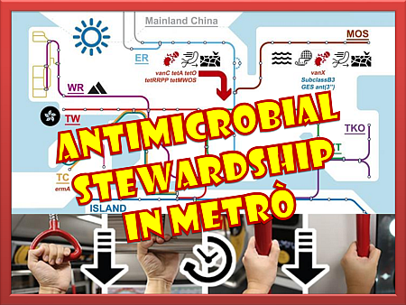 antimicrobial-stewardship-in-metro-nm