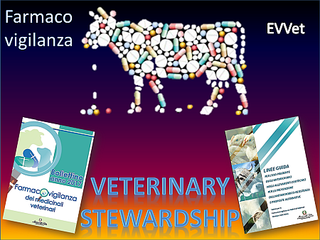 Veterinary Stewardship