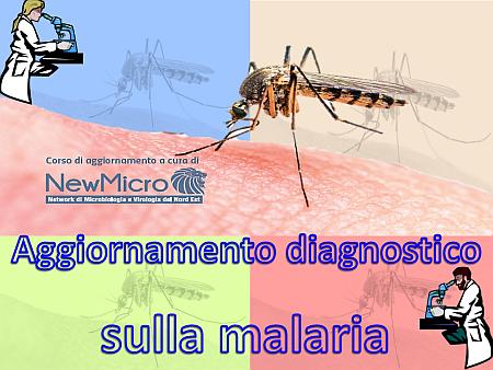 aggiornamento-diagnostico-sulla-malaria-nm