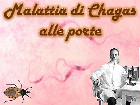 Malattia di Chagas alle porte