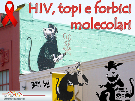 hiv-e-topi-nm