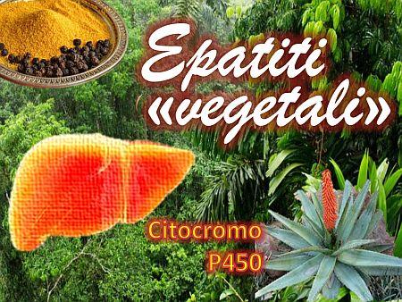 epatiti-vegetalinm