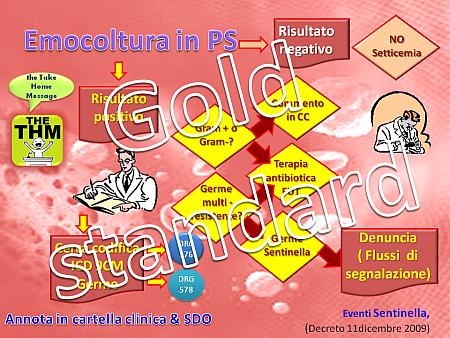 gold-standard-newmicro