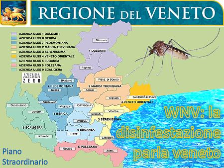 WNV La disinfestazione parla Veneto