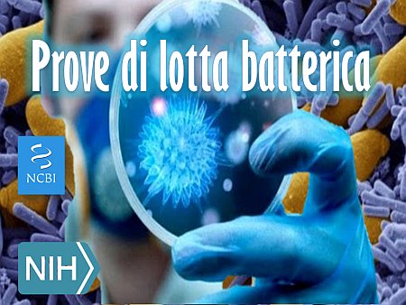Prove di lotta batterica