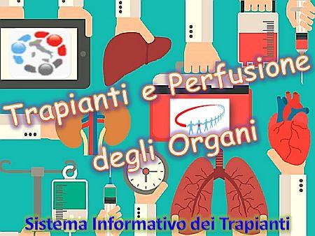 Trapianti e Perfusione degli organi